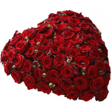 rosen hjerte